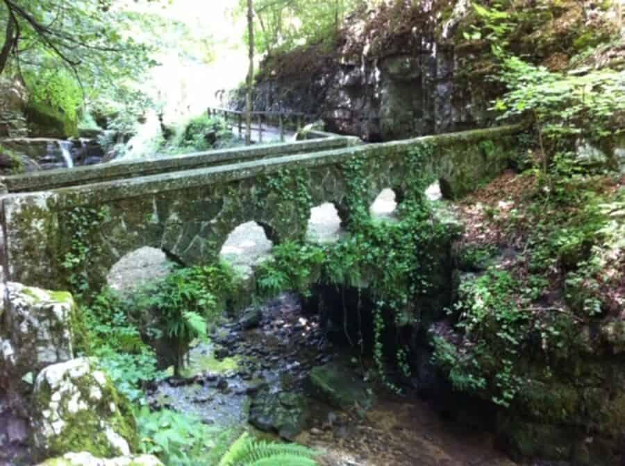 Waldbaden 2