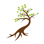 Spendenbaum Start