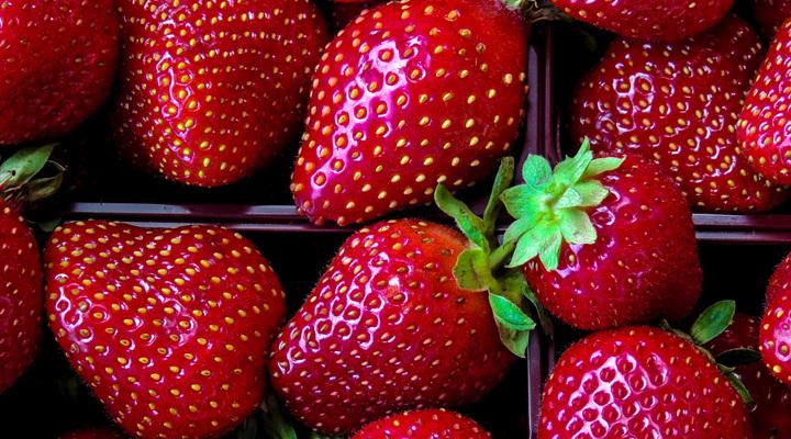 Erdbeeren Foto Philippe Collard