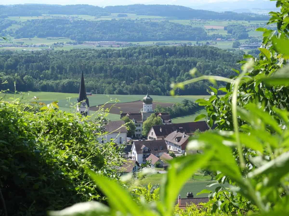 Wanderung Steinam Rhein 1
