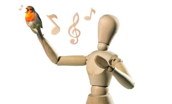 Singen Vogel Cw